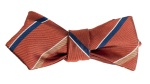 salmon_striped_bow1